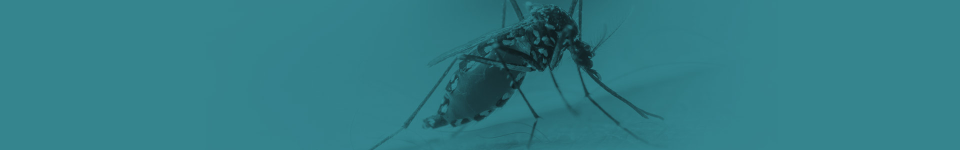 Anti-Malarials