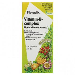 Floradix Vitamin B Complex Liquid - 250ml