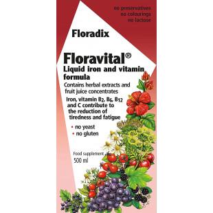 Floradix Floravital Liquid Iron and Vitamin Formula - 500ml