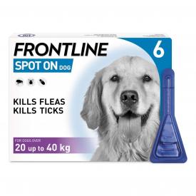 FRONTLINE Spot On Flea Treatment Large Dog - 6 Pipettes